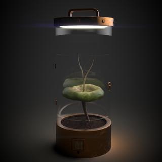 Texturing Plantbox