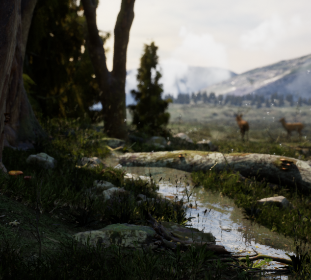 Lighting and setdressing Quixel Assets