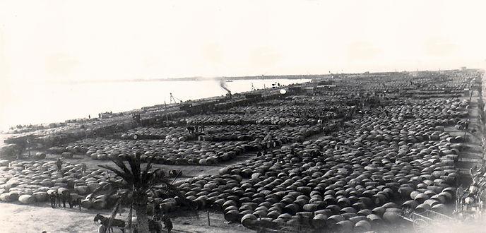 foto historica puerto alicante vino.jpg