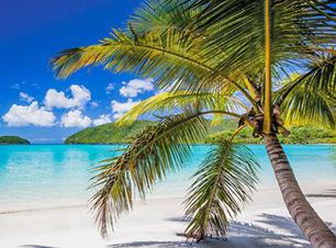 tropical.jpg