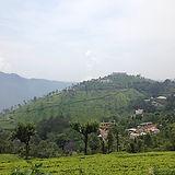 india-1379258_640.jpg
