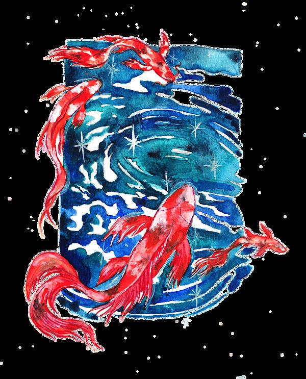 koi fish.png