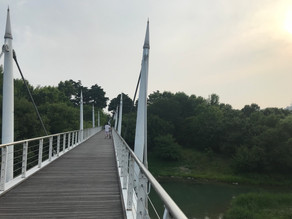 Starting Year 2 in Korea