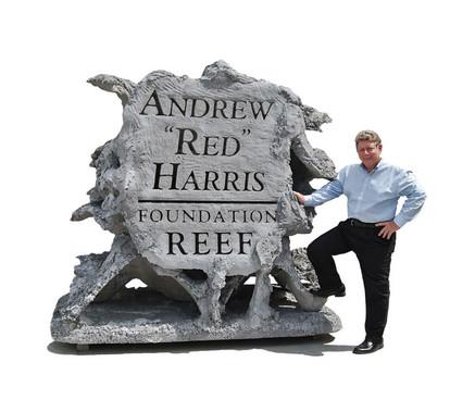 Andrew Harris Reef 2 - CXOART