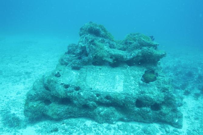 Firehock Memorial Reef 4 - CXOART