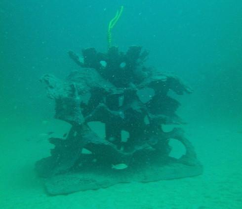 Andrew Harris Reef 10 - CXOART