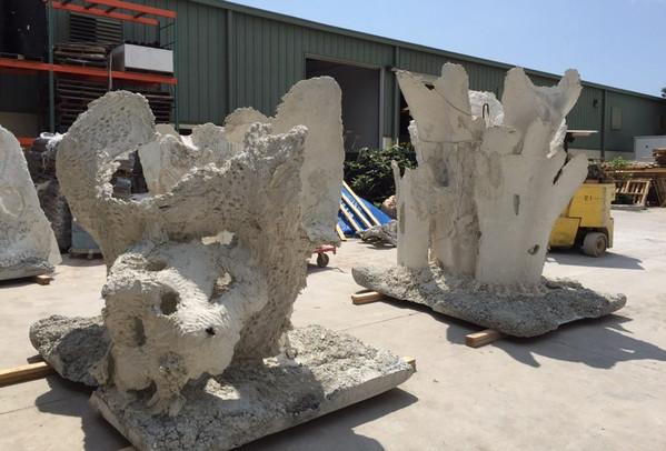Reef Sculpting 15 - CXOART