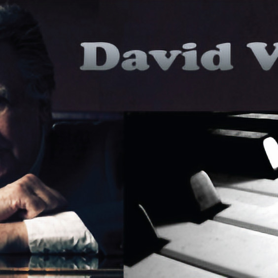 David Vest Blues and Boogie Piano
