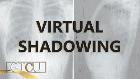 Virtual Shadowing