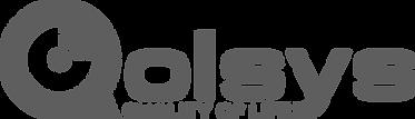 Qolsys Logo Grey large.png