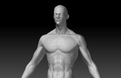 treino anatomico sem referencia wip 00