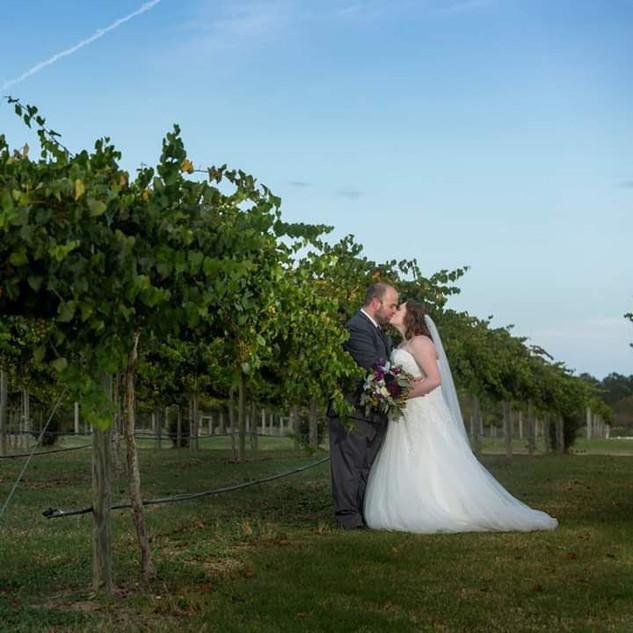 Duplin Winery Wedding