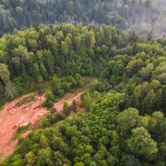 Habitat loss / degradation