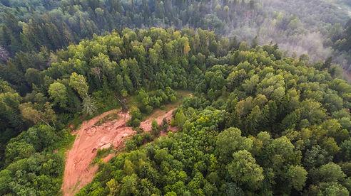 Letecký snímek z lesa