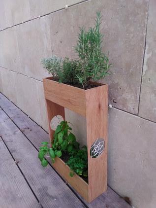 support plante aromatique