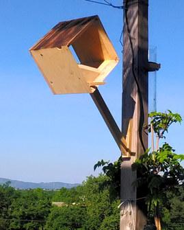 mongeoire à oiseaux en bois