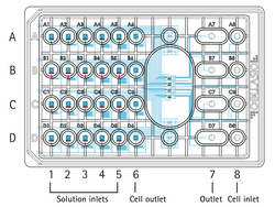 Scheme of the CellASIC ONIX2 microfluidic plate specially designed for bacterial cells