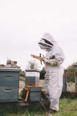 Full on bee suit inspecting a hive