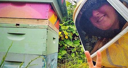 Hive Sponsorship