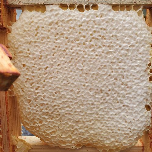 Frame of Artisan Comb Honey