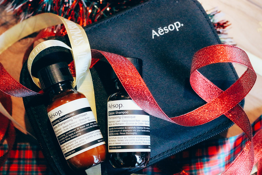 Aesop travel kit