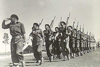 250px-2-6th_cavalry_commando_-_qld_-_on_