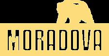 logo MOR.png
