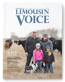 limo_voice_cover_2018_winter.png