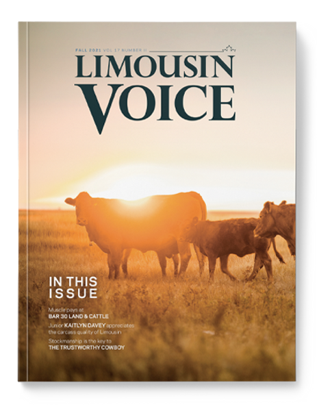 limo_voice_cover_october2021.png