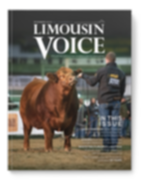 limo_voice_cover_winter2019.png