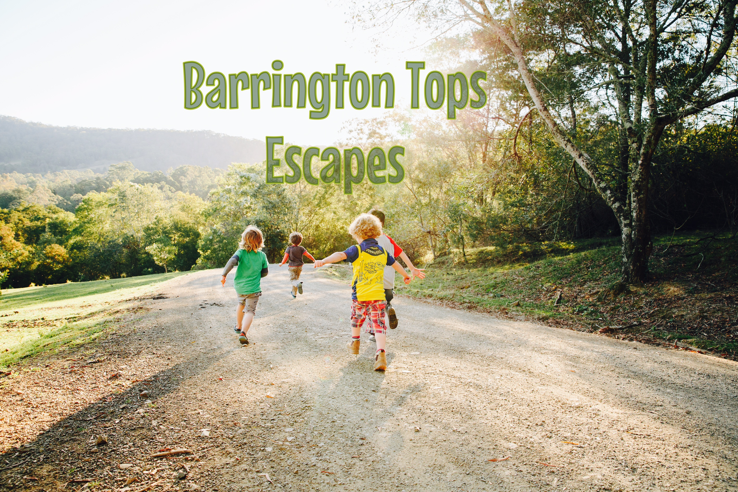 barrington tops escapes