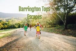 barrington tops escapes