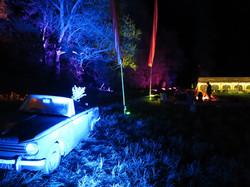 50/50 Fest Car Tree Lighting