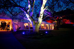 Marquee Wedding Trees House