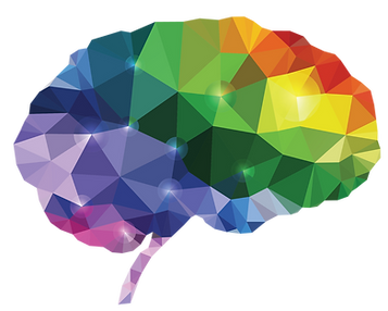 brain-png-18.png