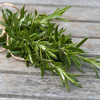 Wild Rosemary (Agrumato)