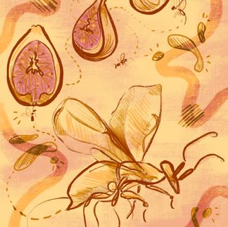 the symbiologist