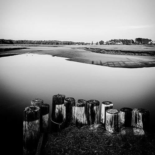 Parsons 2 - Black & White