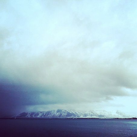 Day 5: Wrapping up in Reykjavik
