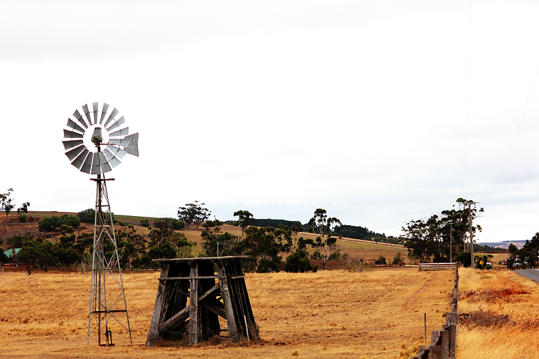 windmill (Large).png