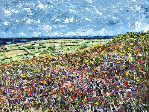 West Penwith Fields