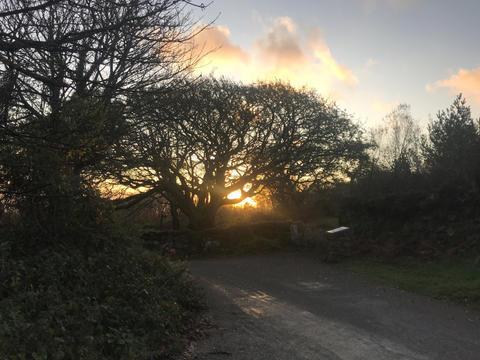 Steeple Lane 07.41am, 6 November 2020