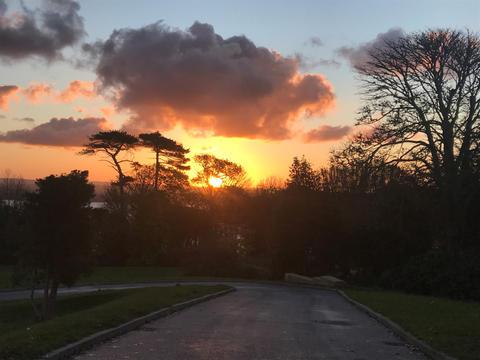 Treloyhan Manor Estate 07.25am, 4 November 2020