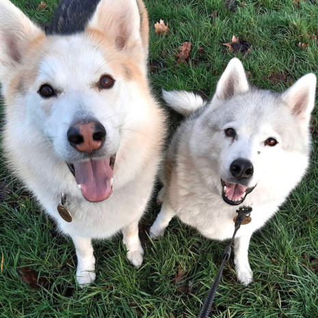 We're Logan & Kiara