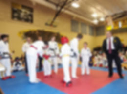 Unified Tae Kwon Do