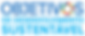 sem emblema onu_Portuguese_SDG_Icons-1-n