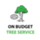On Budget Tree Service Online-01.png