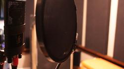 JZ Microphones V11