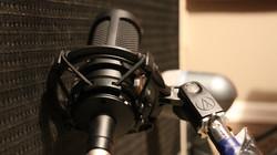 Guitar Cabinet Microphone