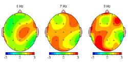 brain map copy